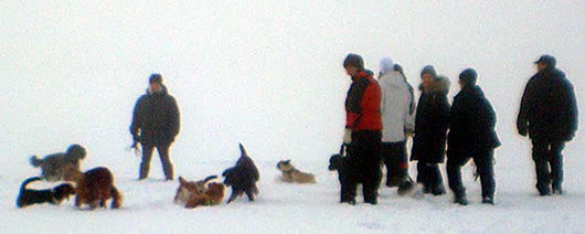 Ispromenaden på Hägernäsviken februari 2010